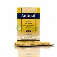 Антинал / Antinal / Египет/ 24 кап.