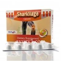 Глюкозамин и хондроитин Египет, Sharkilage Multicare 30 кап