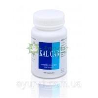 Устричный кальций в капсулах / KAL CAB Oyster Powder Capsules